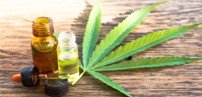 How Do You Use Cannabis Oil For Pain Relief?